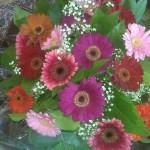 Bloemen ontvangen